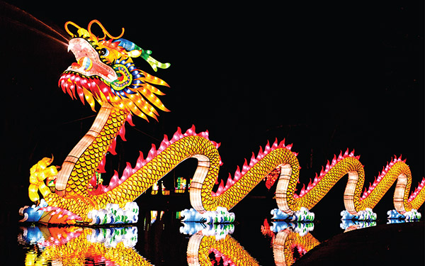 Something for the weekend - Magic lantern festival Cutture